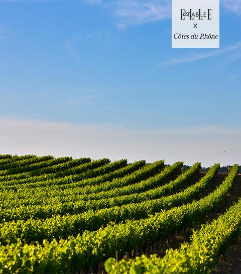 Blanc, Rouge, Rosé : 3 vins des Côtes du Rhône à déguster tout au long de la journée
