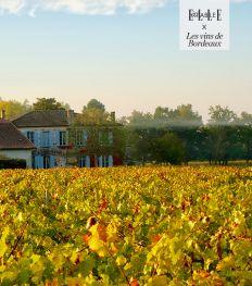 Roadtrip Bordeaux : à la découverte du Médoc