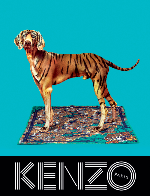 KENZO_FW13_Campaign_-_scarf