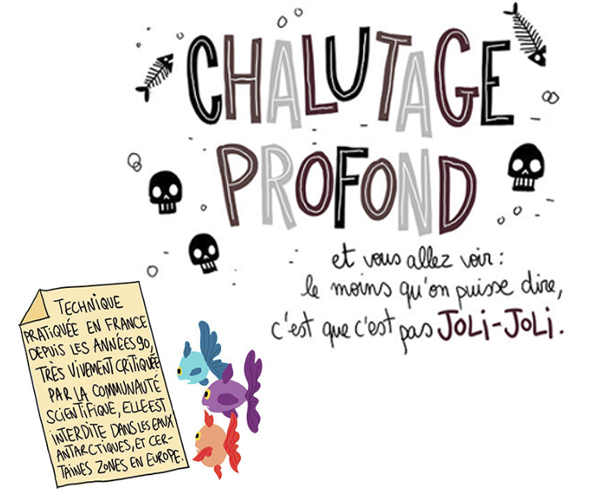 chalutage