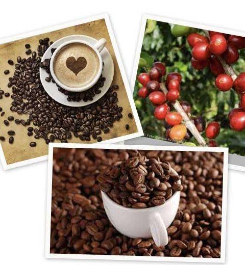On craque pour la tendance café !