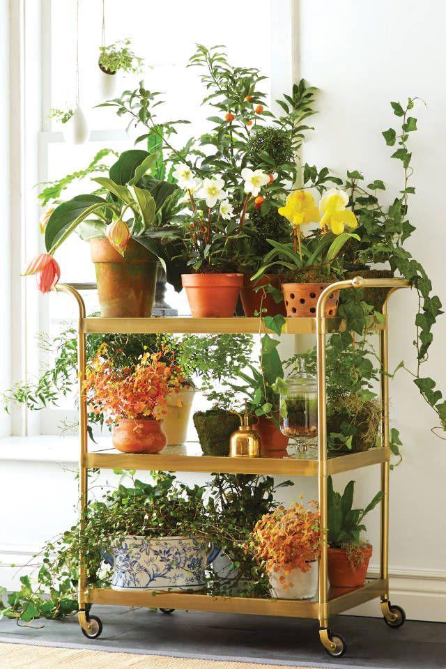 10 idées pour une déco fleurie éblouissante - 6