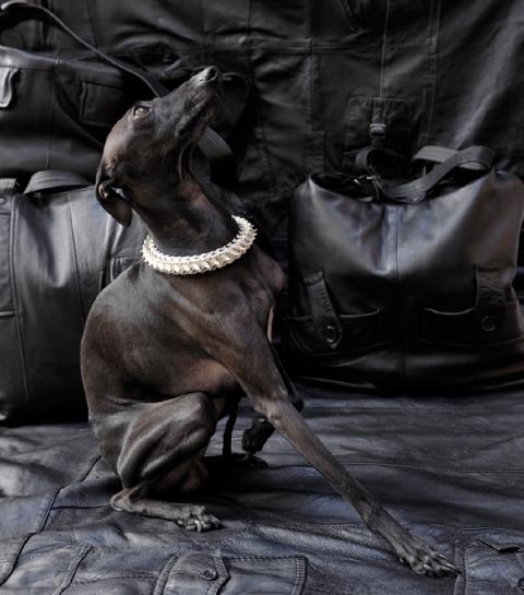 Bones on Skin : collab' de cuir, d'os et d'argent