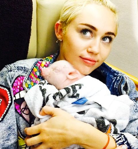 Les photos du nouvel amour de Miley Cyrus