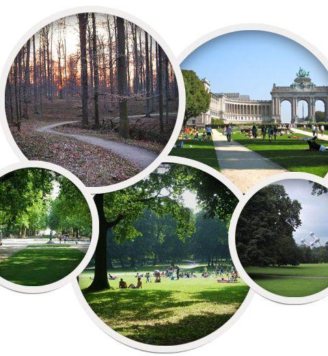 5 endroits verts pour faire son jogging à Bruxelles