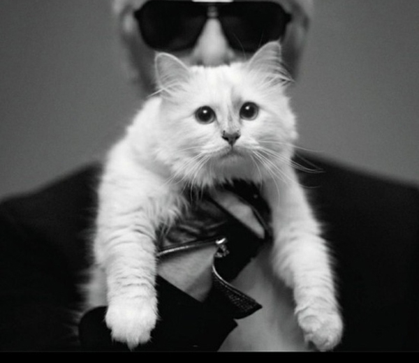 Photo: Karl Lagerfeld & Choupette