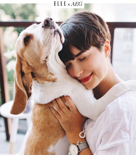 Animal lover : La solution pour se débarrasser des poils