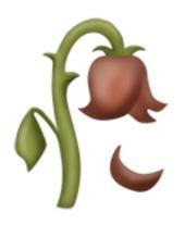 Dessin Rose En Fleur Fanee Idee D Image De Fleur