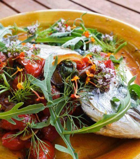 IBIZA: 7 bonnes adresses où manger healthy