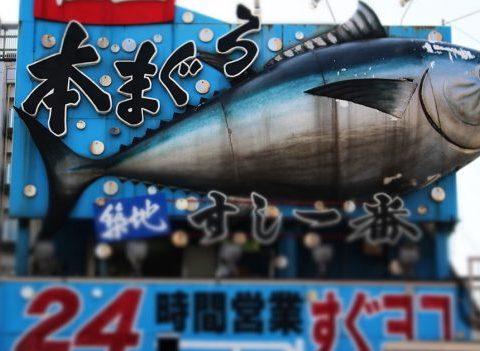 Les carnets de voyage de Céline: le Japon en 20 leçons