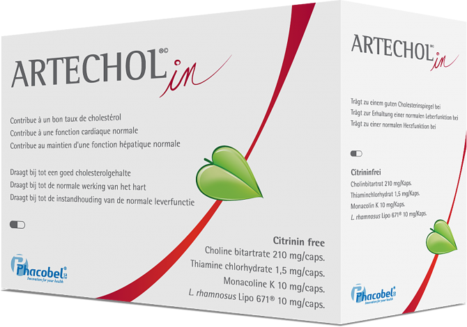 Les armes anti-cholestérol - 1