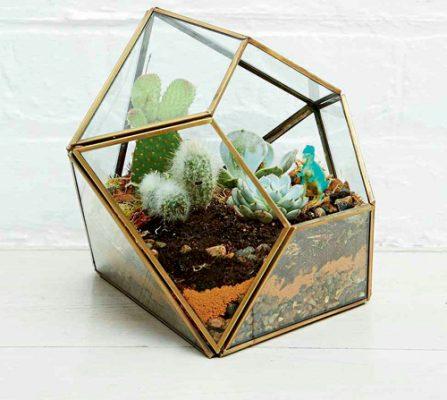 1_Terrarium-3-urban-outfitters