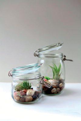 2_terrarium-2-mason-jar-copyrigh-garden-therapy