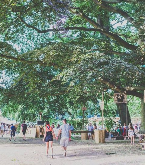 Paradise City Festival revient pour sa 2ème édition