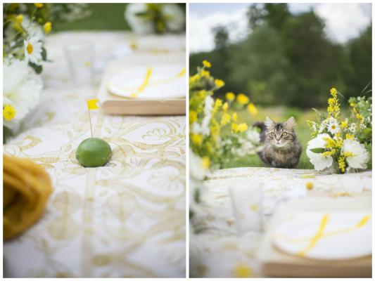 LT_picnic-champêtre-en-jaune-et-blanc_03