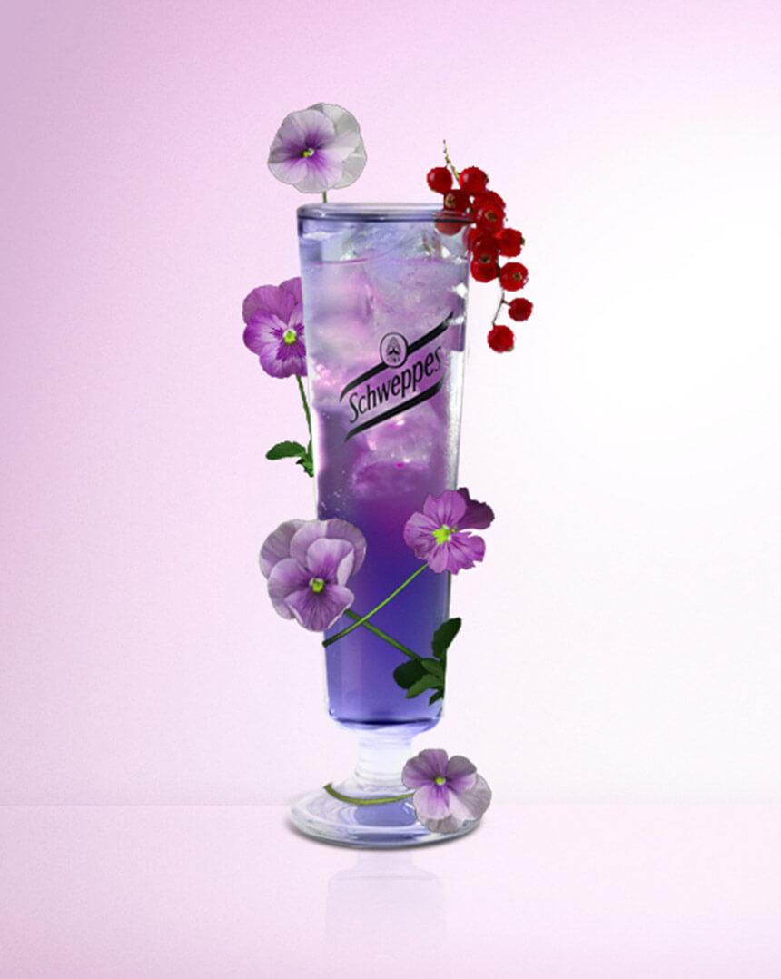 Le-Violet-Tonic