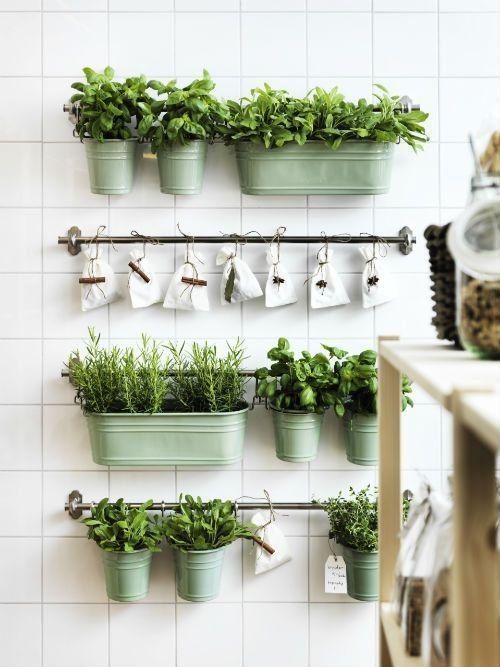 Dans des bacs métalliques accrochés au mur. Idéal pour les herbes fraîches.