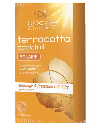 Etui-Terracotta-Solaire-1215-400×500