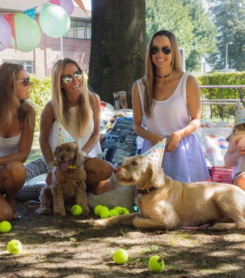 La bonne action du ELLE Belgique pour la Journée Internationale du chien