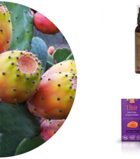 L'huile de cactus : un soin indispensable