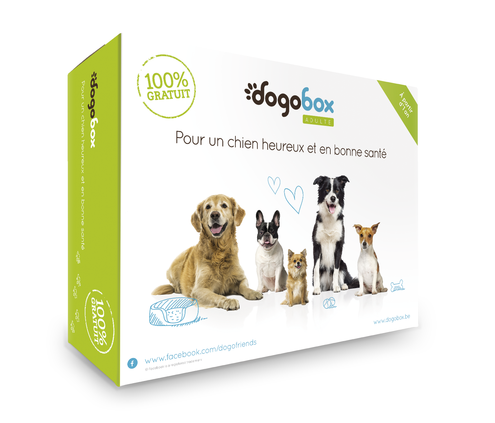 dogobox_3D_ADULT_FR_big (1)