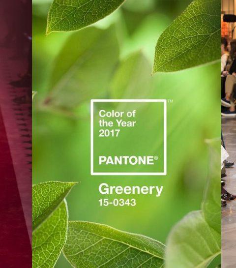Greenery : la couleur 2017 selon Pantone
