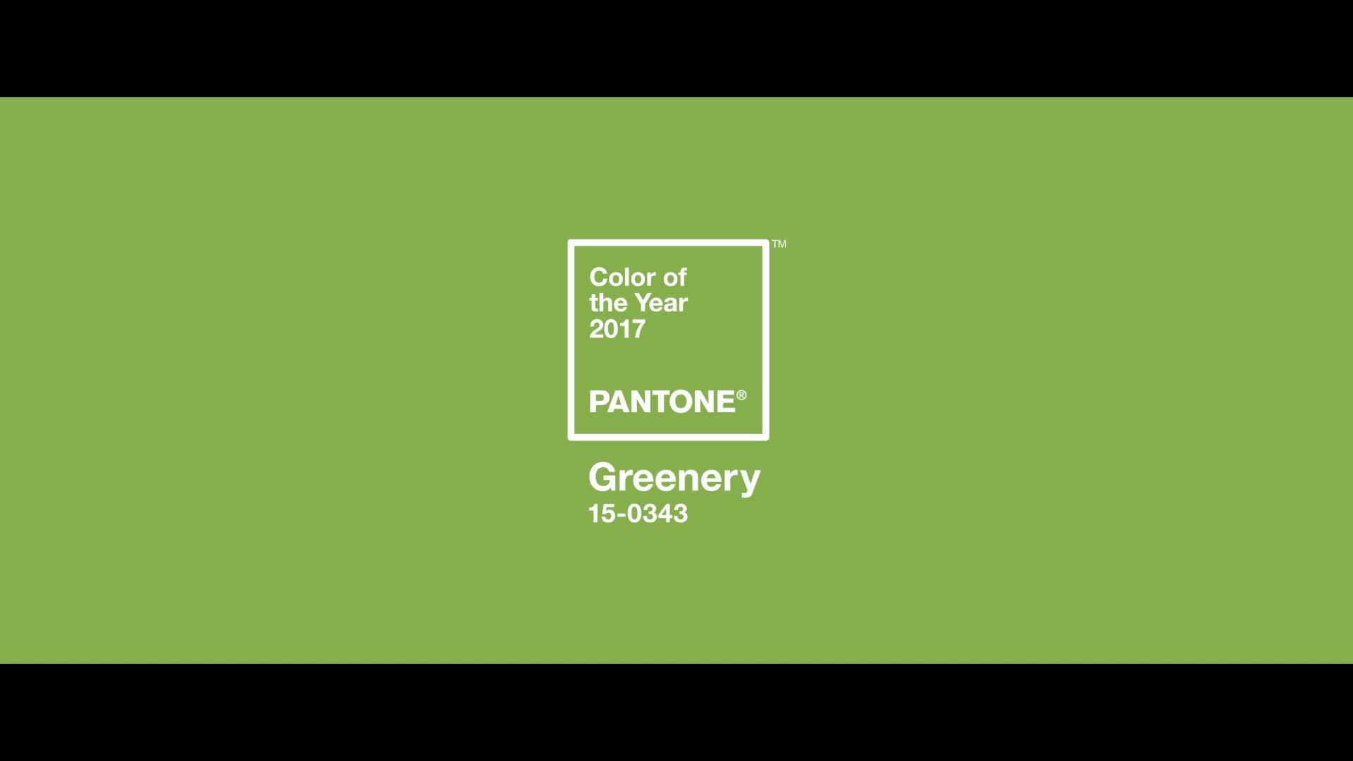 pantone_coy_2017_clip_091616_45_318818340-11