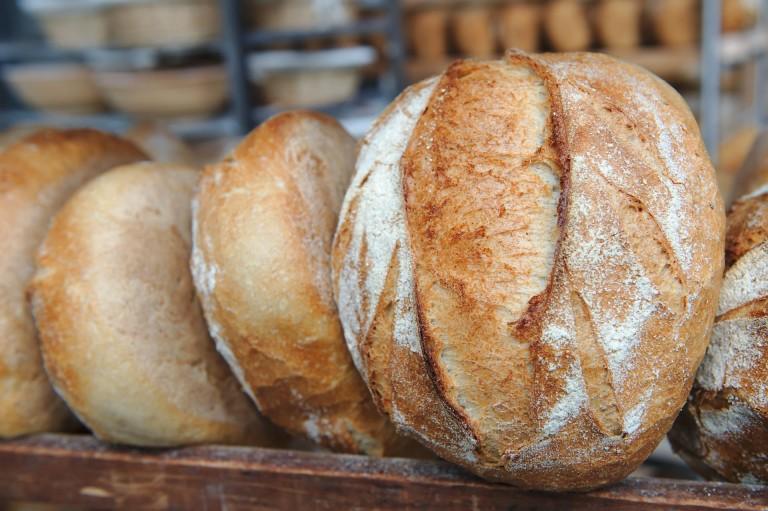 Photo des pains de Agribio
