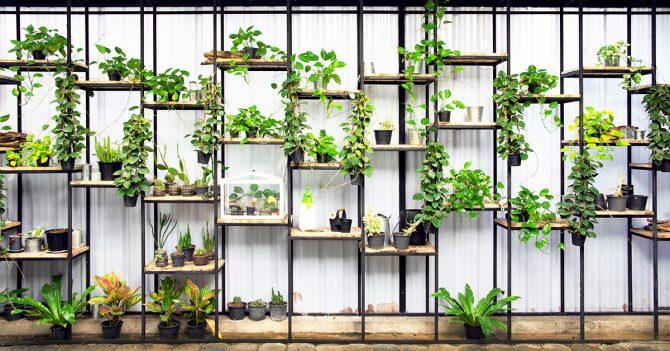 trois fermes urbaines bruxelloises explorer sans plus tarder. Black Bedroom Furniture Sets. Home Design Ideas