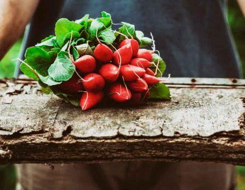 Maigrir: les 10 ingrédients magiques à avoir dans son placard !