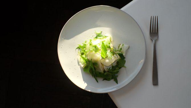hortenseethumusplat