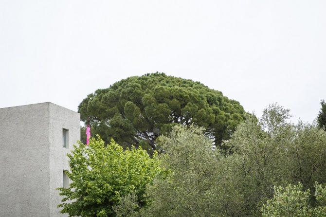 Le Festival d'Hyères a hissé le drapeau Blanc - 8