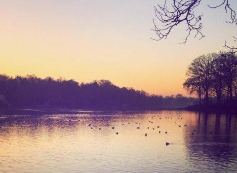 10 endroits sympas où profiter de la nature en Belgique