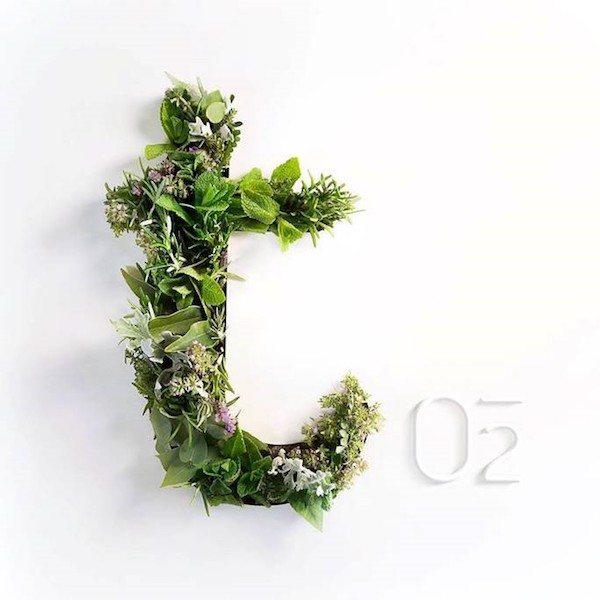 La Terrasse O2 : le nouvel endroit green à tester cet été - 1