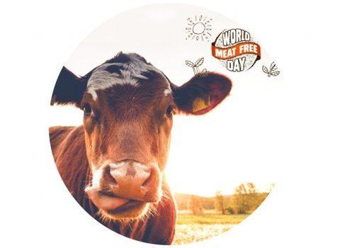 Journée mondiale sans viande : comment consommer plus durable et éthique ?