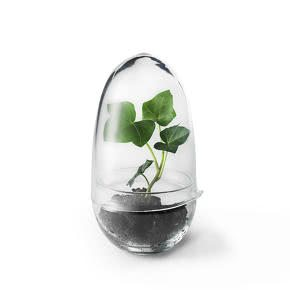 mini-serre-grow-s-design-house-stockholm-181409-2