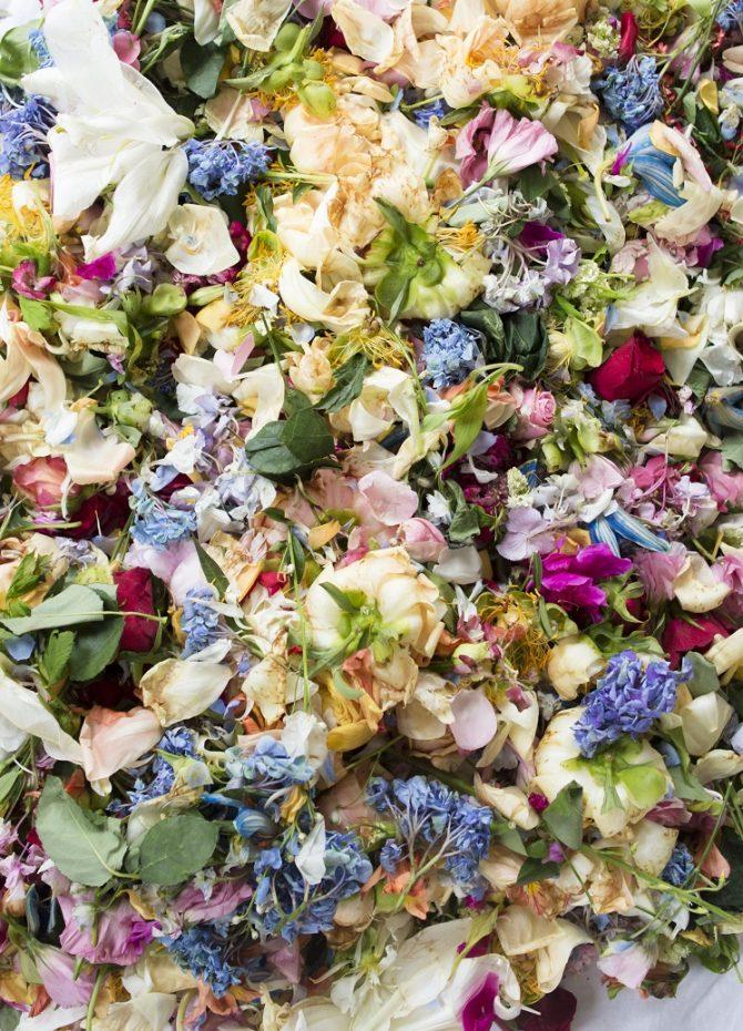 Où trouver les plus beaux bouquets de fleurs de Bruxelles ? - 10