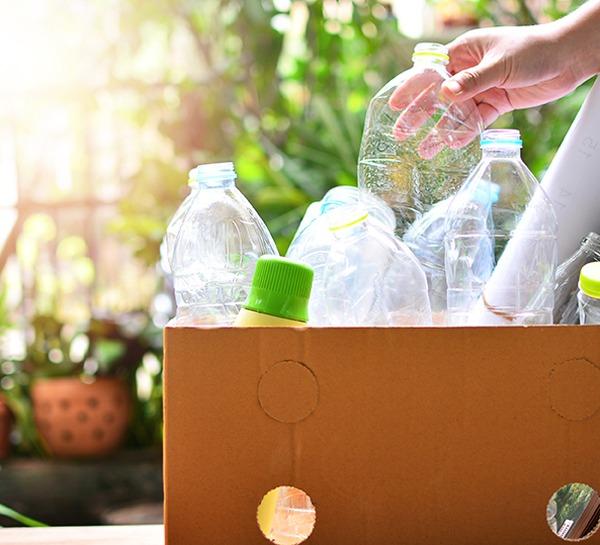 Shutterstock - bouteilles d'eau en plastique