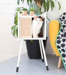 Nos chats ont testé la collection IKEA pour les animaux de compagnie (VIDEO)