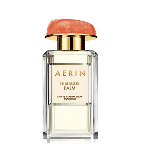 aerin_web