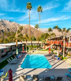 palm_springs_coachella_travel-480×545