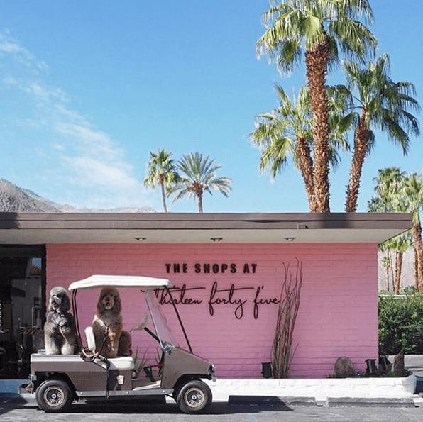 Palm Springs : quels sont les lieux de résidence préférés des stars ? - 3
