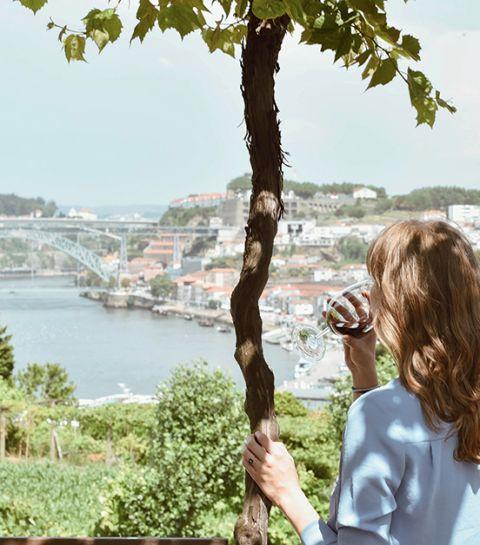 Carnet de voyage : de Porto à la vallée du Douro