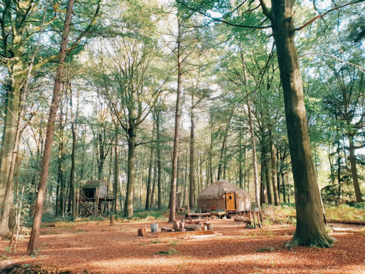 Airbnb belgique yourte