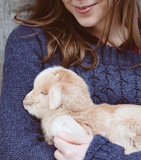 Le produit de beauté qu'il vous faut si vous aimez vraiment les animaux