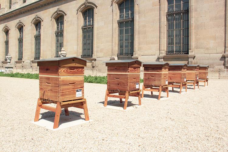 On y va : Le Louvre x les ruches de Nuxe - 2