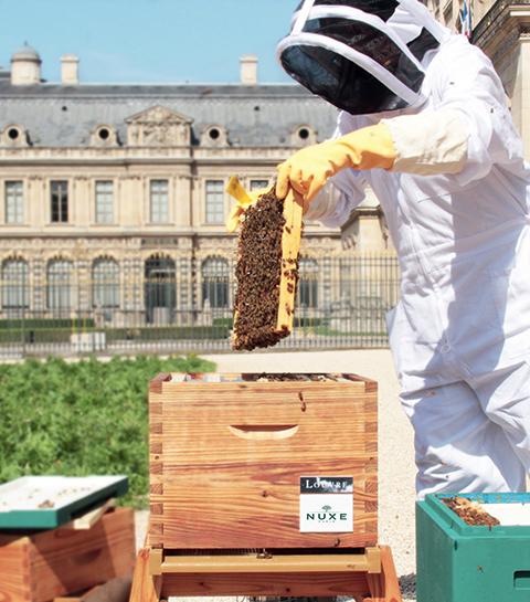 On y va : Le Louvre x les ruches de Nuxe