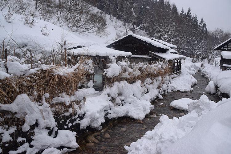 Quelles sont les piscines d'hiver les plus cool au monde ? - 5