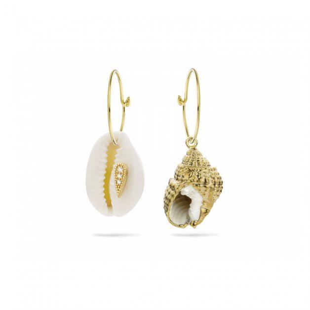 bijoux coquillages boucles d'oreilles Mya Bay