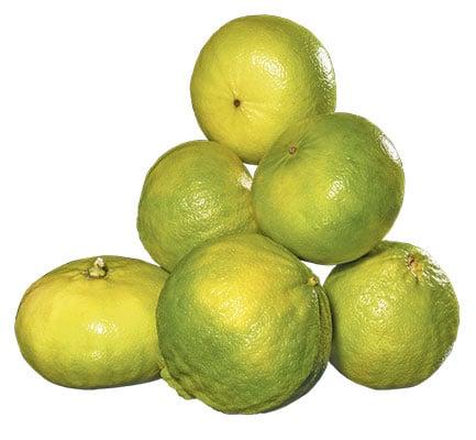 Photo d'une poignée de bergamotes.